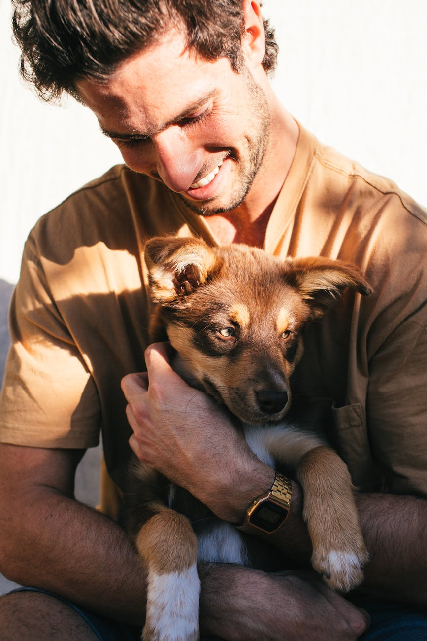 crop man with puppy in hands