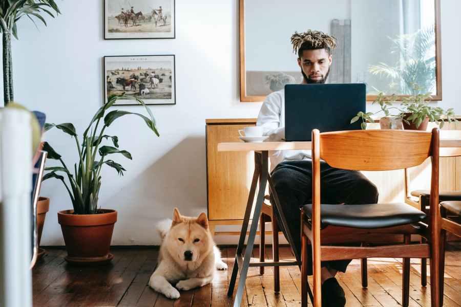 pensive black man using laptop while akita inu resting on floor