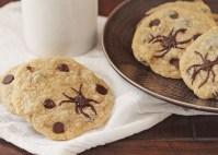 spidercookies3