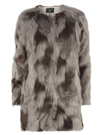 Dorothy Perkins Coat