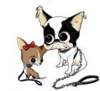 Dsquared2-for-DOGS-on-www.fashiondailymag.com-brigitte-segura2