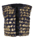 blue_and_gold_feather_waistcoat