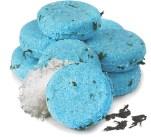 Lush Fresh Handmade Cosmetics Seanik solid shampoo fashiondailymag selects