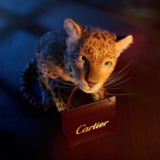CARTIER Winter Tale Holiday 2013 fashiondailymag sel 8