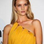 rosie huntington whiteley amfar cannes 2014