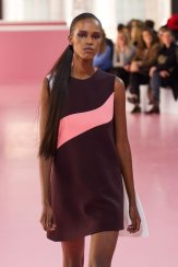 DIOR fall 2015 PFW highlights FashionDailyMag sel 35b