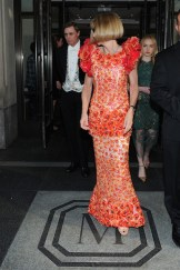 anna wintour Met Gala 2015 Fashiondailymag sel 2