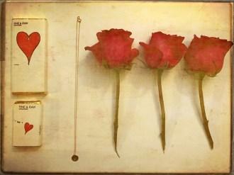 ROMANCE VALENTINES GIFTS FASHIONDAILYMAG 11399