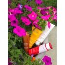 SUMMER BODY ANTICELLULITE 2 CLARINS brigitte segura FashionDailyMag