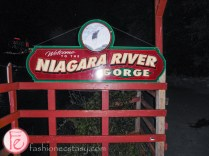 Taste Niagara USA Niagara River Gorge