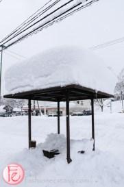 niseko in the winter