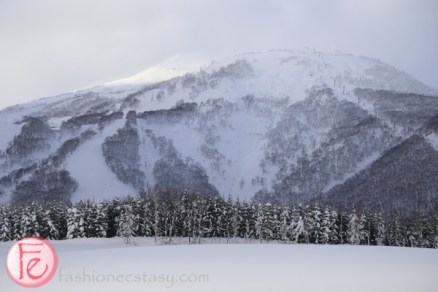 niseko mountains covered in snow in the winter