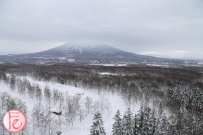 Hilton Niseko Village Hotel-view from guest room