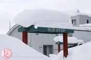 Niseko bus stop