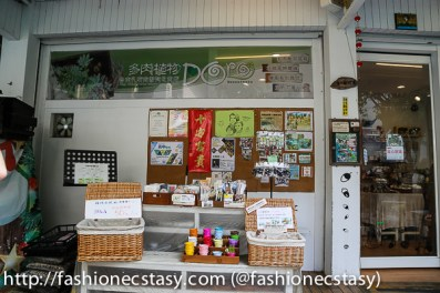 Doro succulents souvenir shop Tainan English friendly store