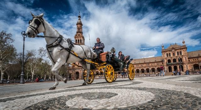 sevilla horse spain tourism