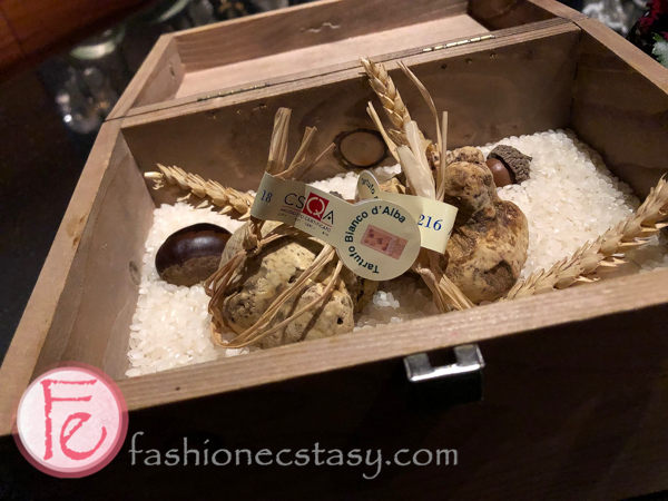 台北侯布雄白松露 Robuchon Taipei white truffle