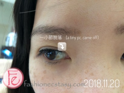 TWIGGY繡眼線 紀錄