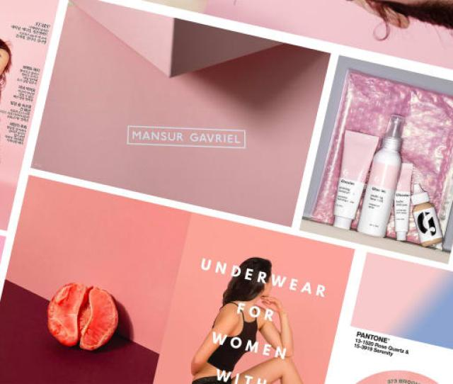 How Tumblr Pink Became The Most Ubiquitous Color In Fashion Branding