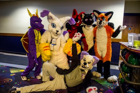 Furry Fandoms at a Furry convention