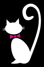 White cat on black background with pink necktie