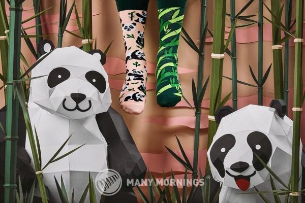 Sweet Panda Socks