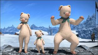 pig suit