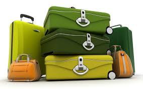 Fashion-Nuevo-luggage (7)