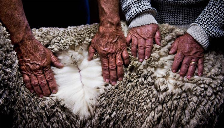 quality fabrics textile luxury wool