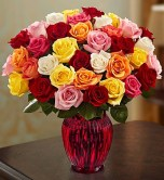 Gemini: Roses
