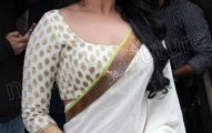 Bollywood actresses wearing saree dress (4)