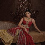 Jawwad Ghayas Elect the bridal collection 2013 (6)