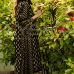 Aysha Anees Eid Collection 2013 for Girls (6)