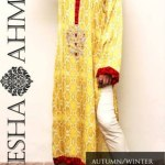 Ayesha Ahmed Autumn Winter eid Collection 2013 (4)