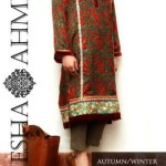 Ayesha Ahmed Autumn Winter eid Collection 2013 (8)