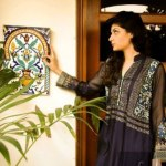Nadia Farooqui Fall Exhibition 2013 for women (8)