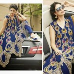 Luxury Royal style Formal Dresses for Ladies (4)