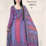 Brasso by Dawood Textiles Winter Collection 2013-2014 For Ladies (9)