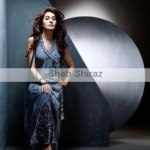 Formal Wear Suits 2014 For Women By Shab Shiraz Clothing (11)