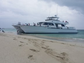 Excellence Catamaran