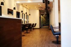 salon-ii.jpg.jpeg
