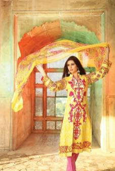 Embroidered Luxury Dresses Deeba Collection By Shariq 2016 11