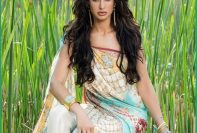 Shehla Chatoor Luxury Lawn Collection