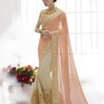 Indian Formal Saree Designs That Can Be Worn On Any Event 8