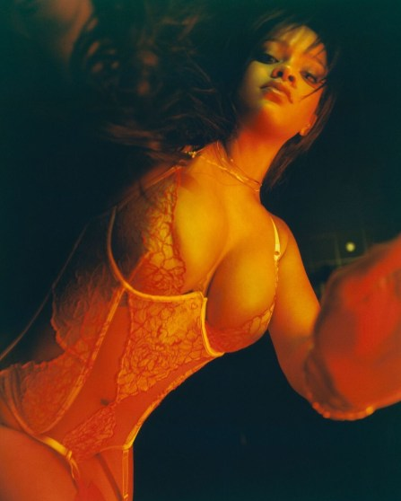 Rihanna wears a lace demi cup basque with split front in a close crop campaign shot from her debut lingerie line Savage x Fenty