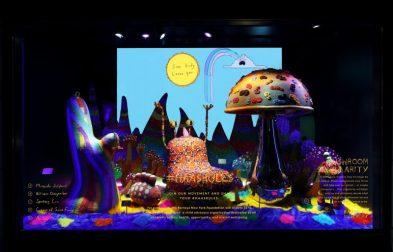 Window 4 - Mushroom Singularity