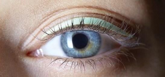 eye (24)