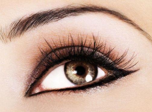 eye (41)