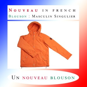 How to use the French Adjective NOUVEAU ? ✌️