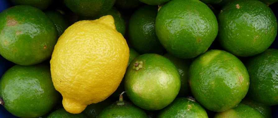 Lose fat with lemons